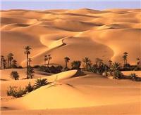 Líbia pode ser dos primeiros importadores do computador Magalhães