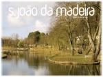 Câmara de S. João da Madeira paga Magalhães